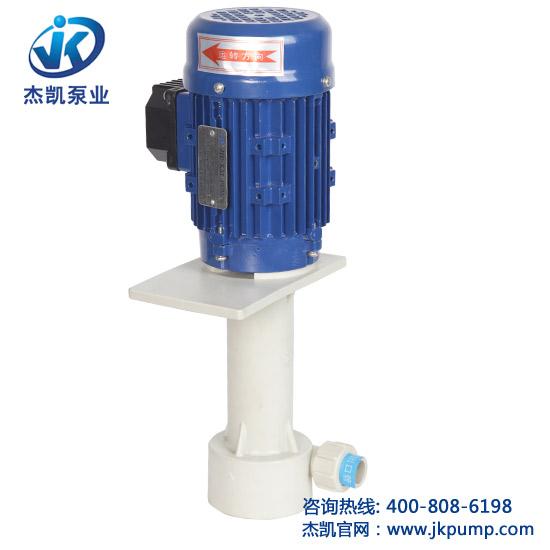 槽内立式泵
